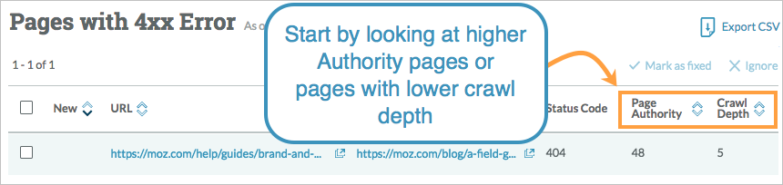 start fixing 404 pages